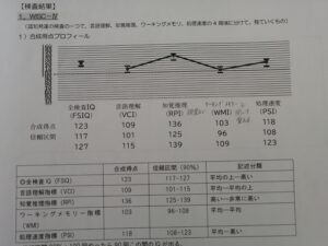 WISC-Ⅳ結果,IQ高い